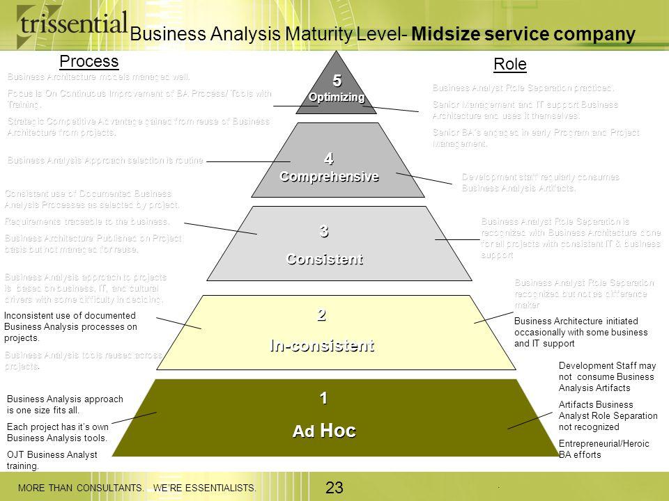Business Analysis Maturity Level- Midsize service company