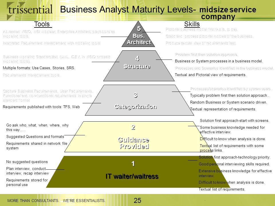 Business Analyst Maturity Levels- midsize service company