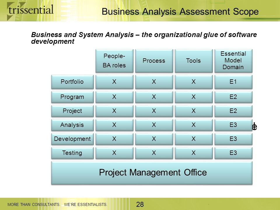 Business Analysis Assessment Scope