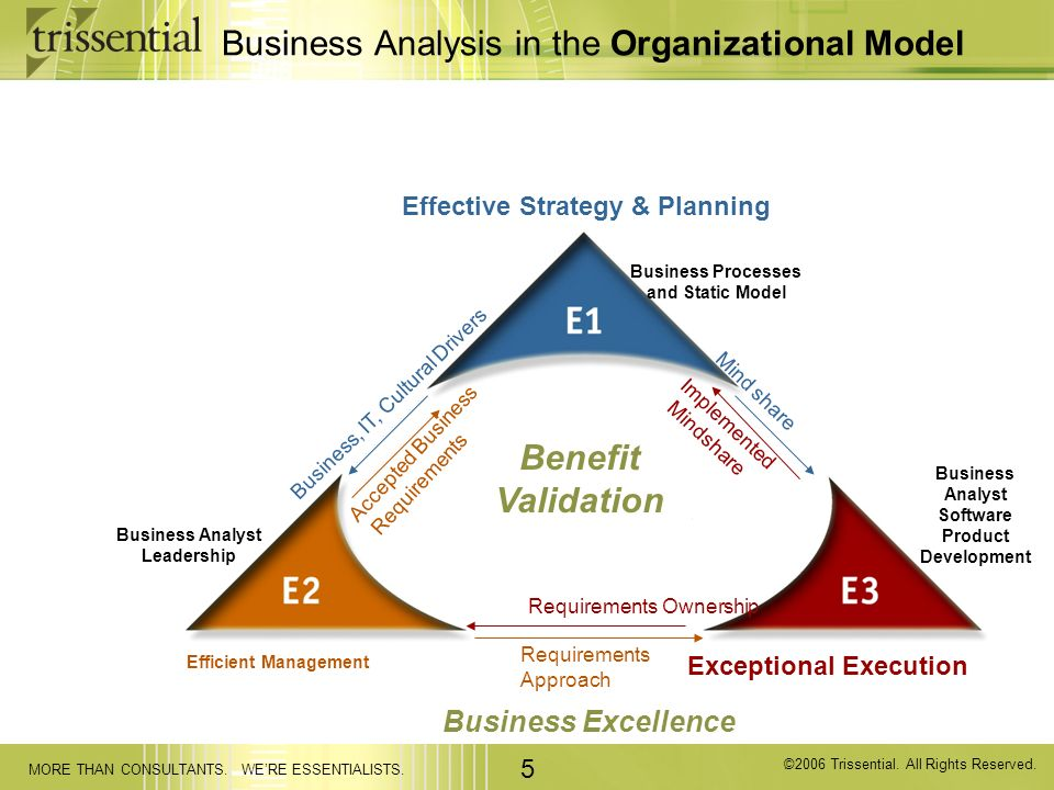 Business Analysis in the Organizational Model