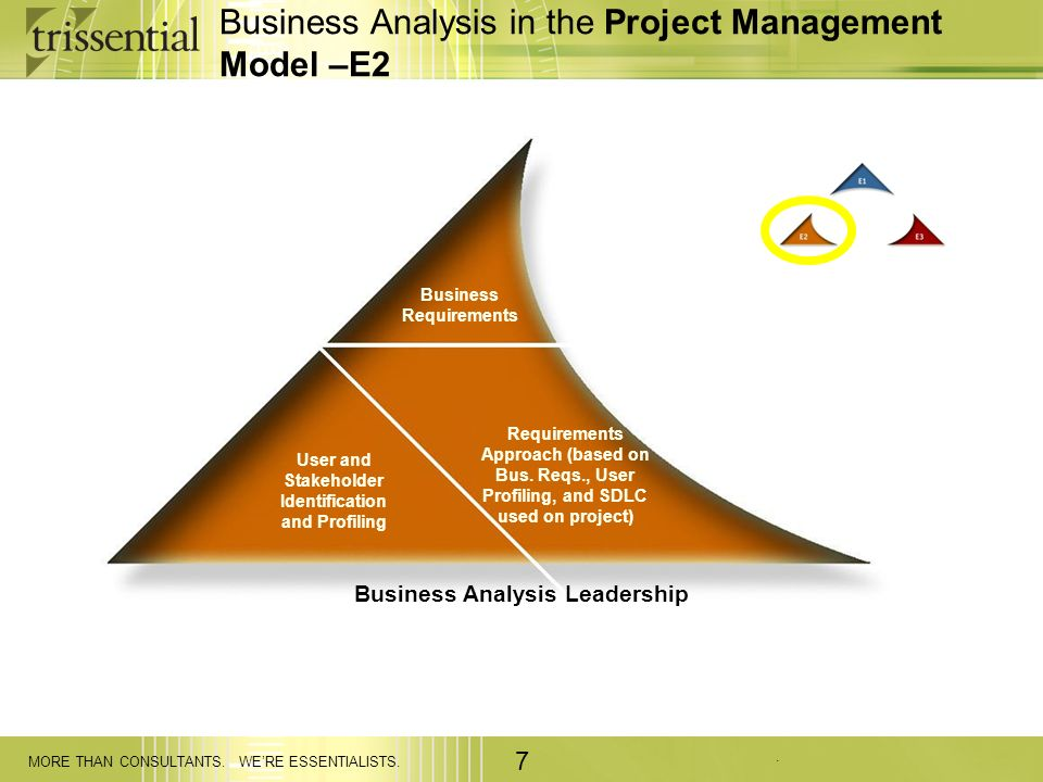 Business Analysis in the Project Management Model –E2
