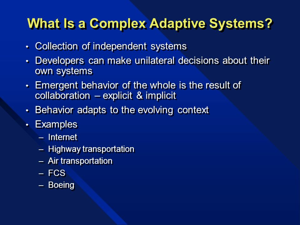 What Is a Complex Adaptive Systems