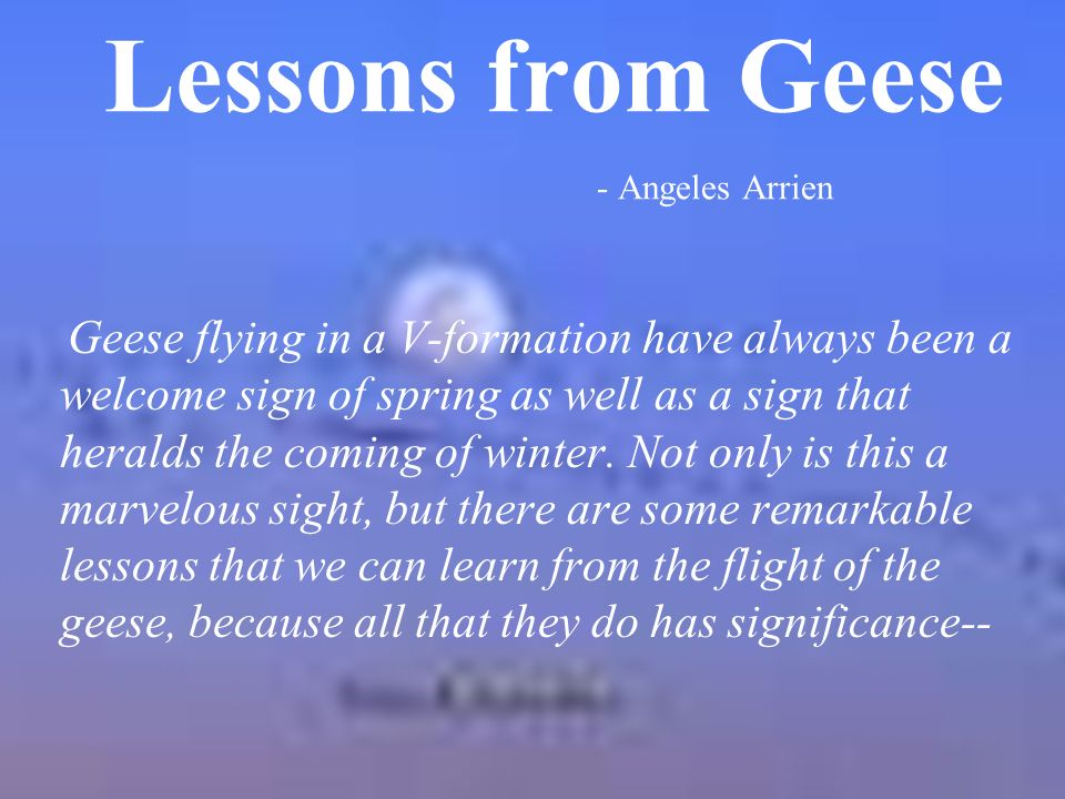 lessons from geese To those who have messaged asking if they could use this the answer is yes, go right ahead take note of the attributions i have made below and those in.