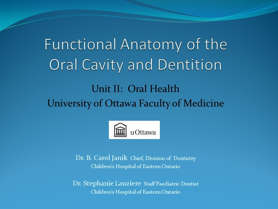 Functional Anatomy of the Oral Cavity and Dentition - ppt video ...