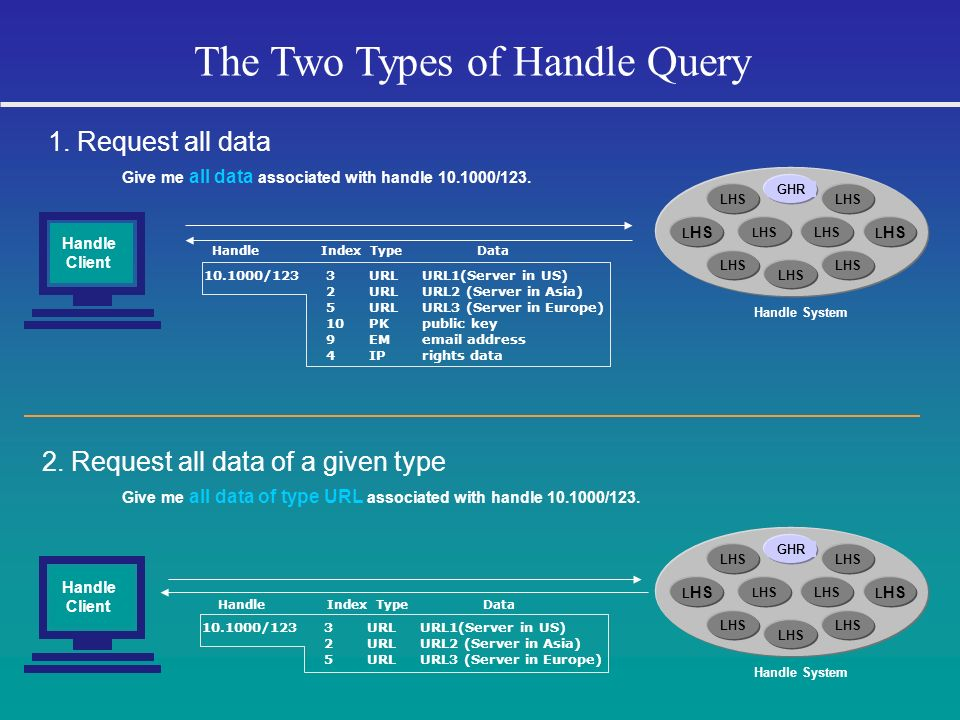 The Two Types of Handle Query