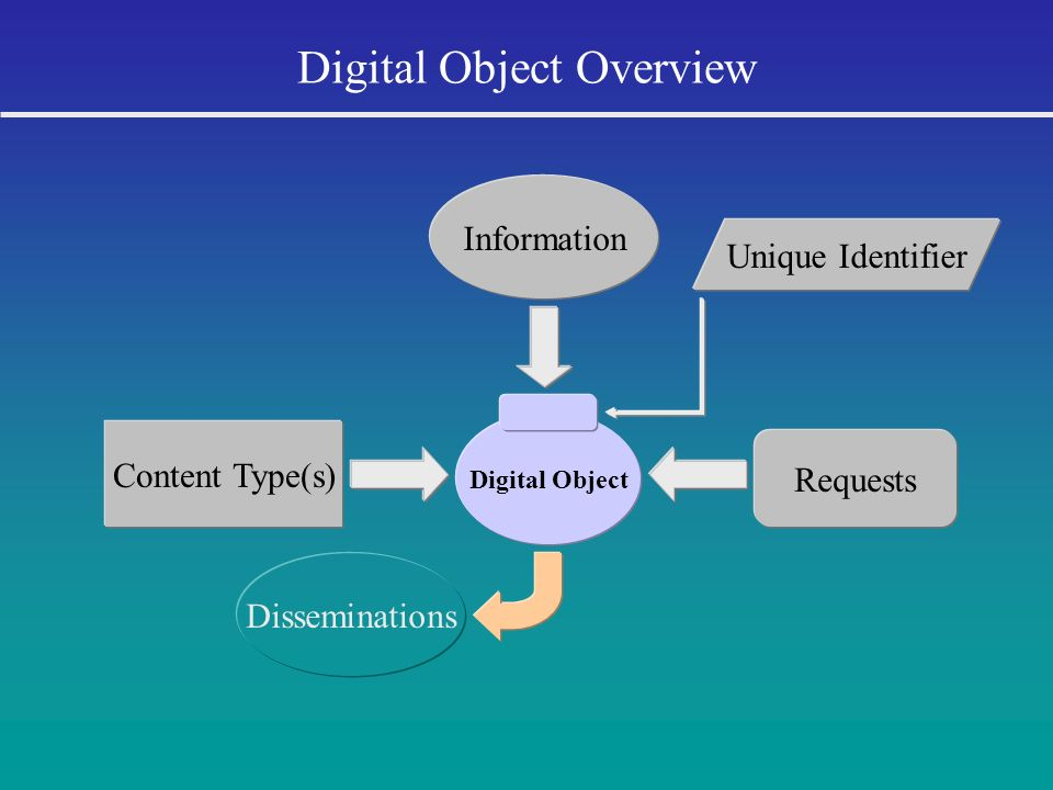 Digital Object Overview