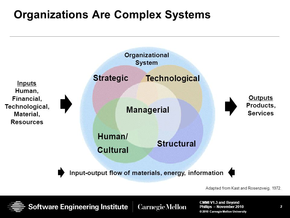 Organizations Are Complex Systems