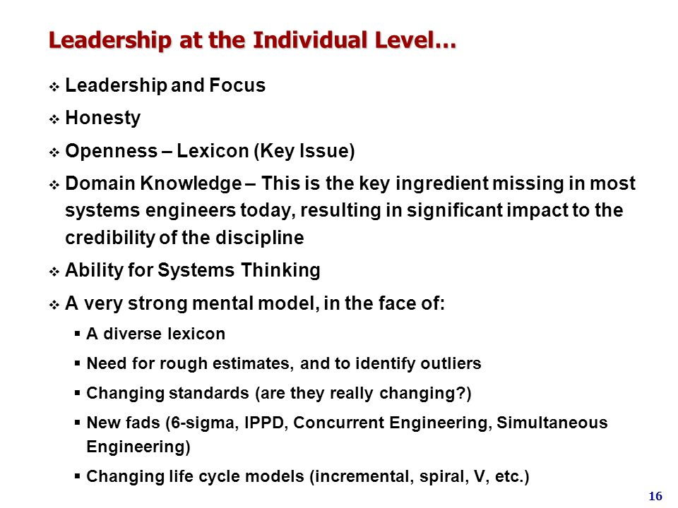 Leadership at the Individual Level…