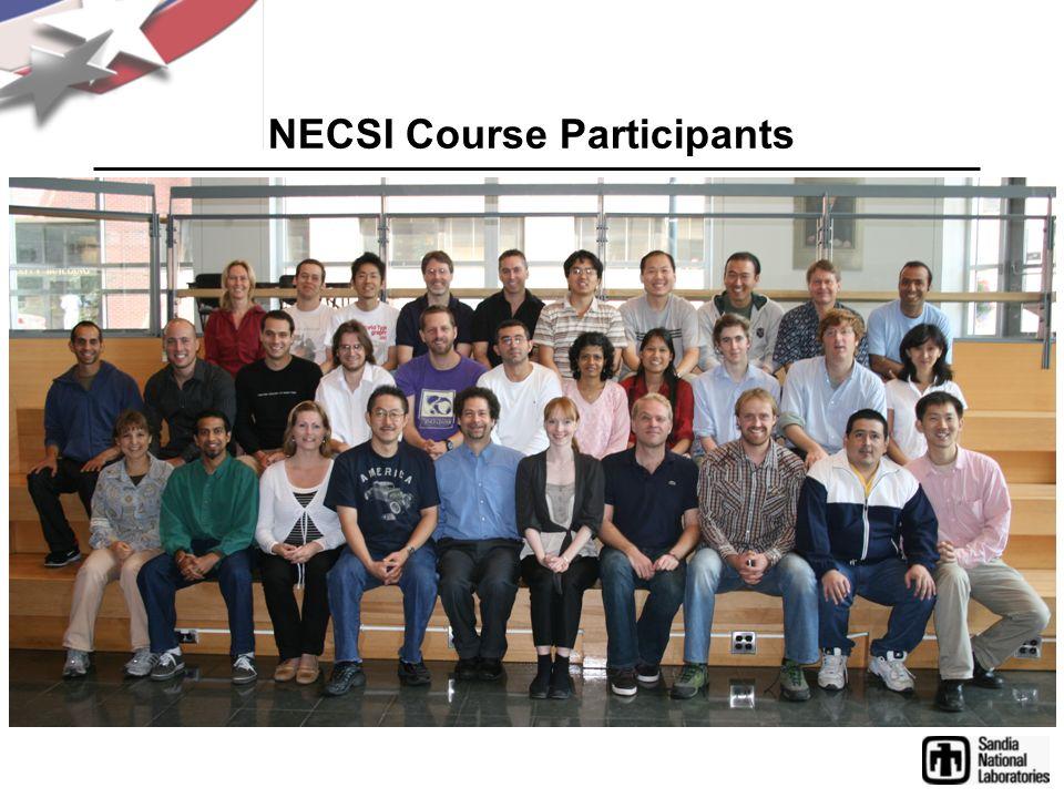 NECSI Course Participants