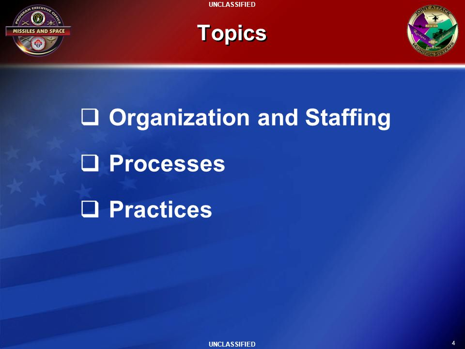 Organization and Staffing Processes Practices
