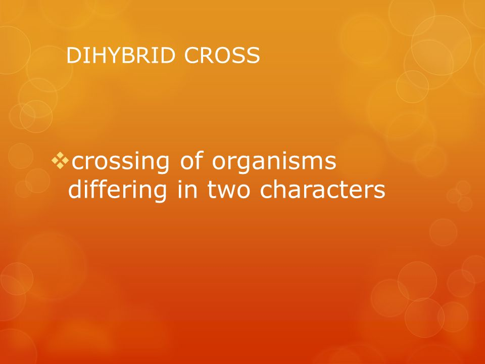 crossing of organisms differing in two characters