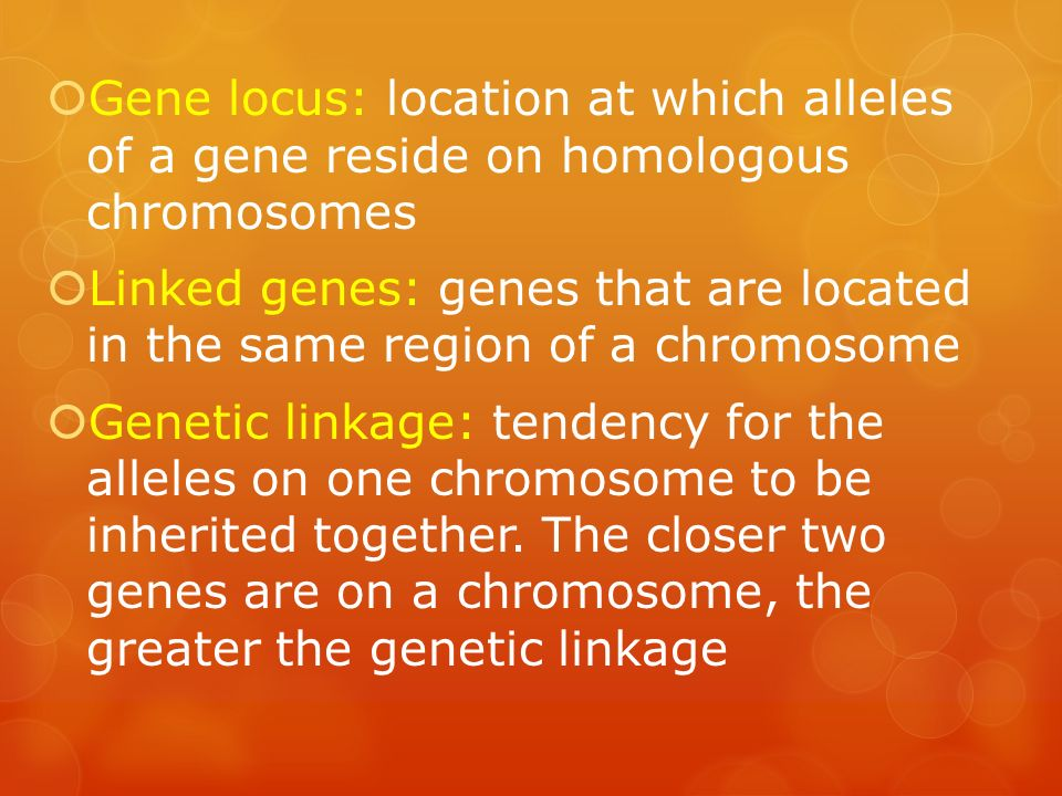 Gene locus: location at which alleles of a gene reside on homologous chromosomes