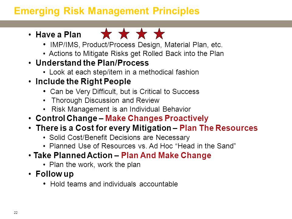 Emerging Risk Management Principles