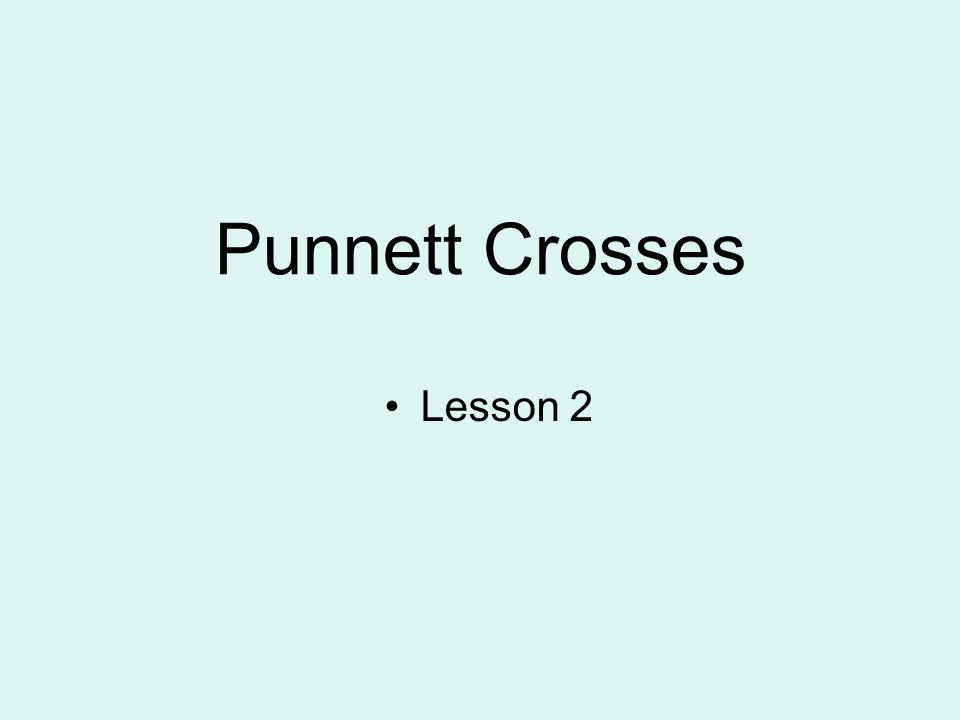 Punnett Crosses Lesson 2