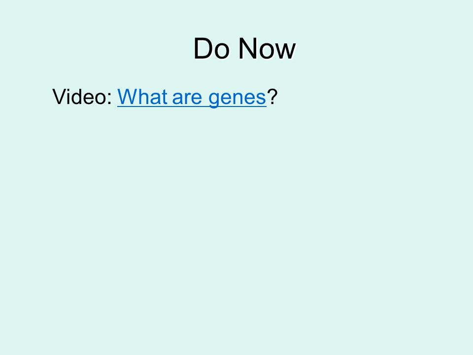 Do Now Video: What are genes