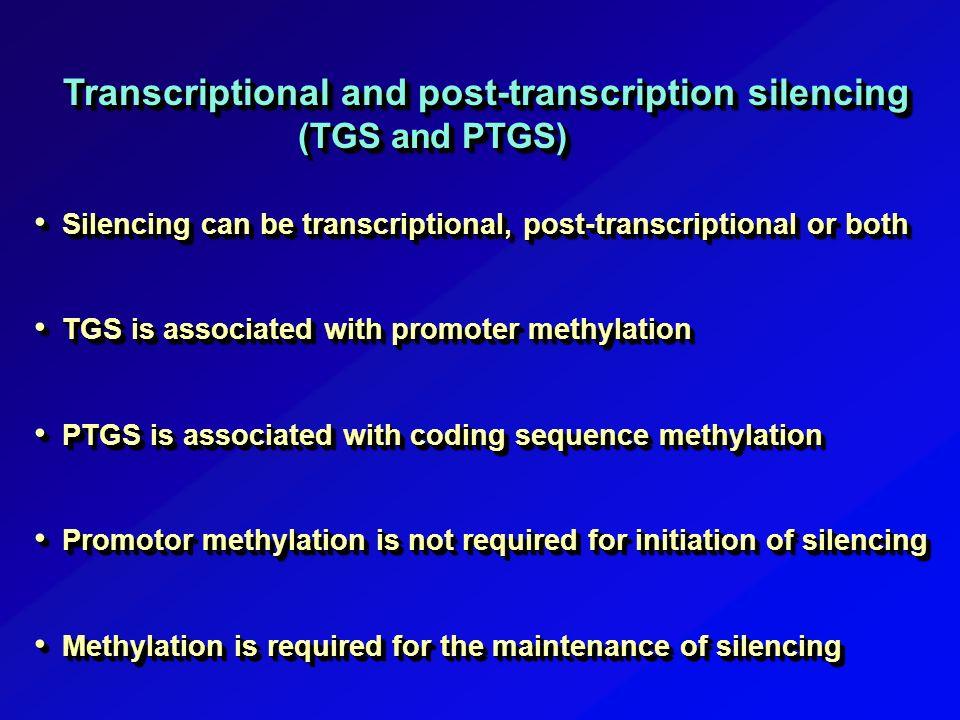 post transcriptional gene silencing pdf