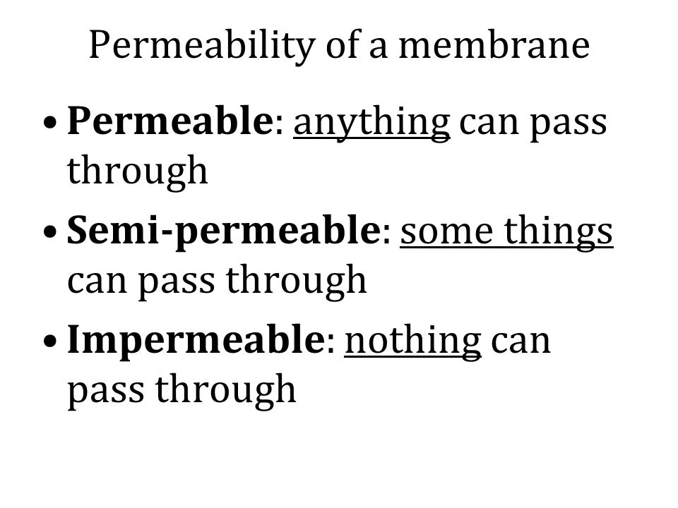Permeability of a membrane