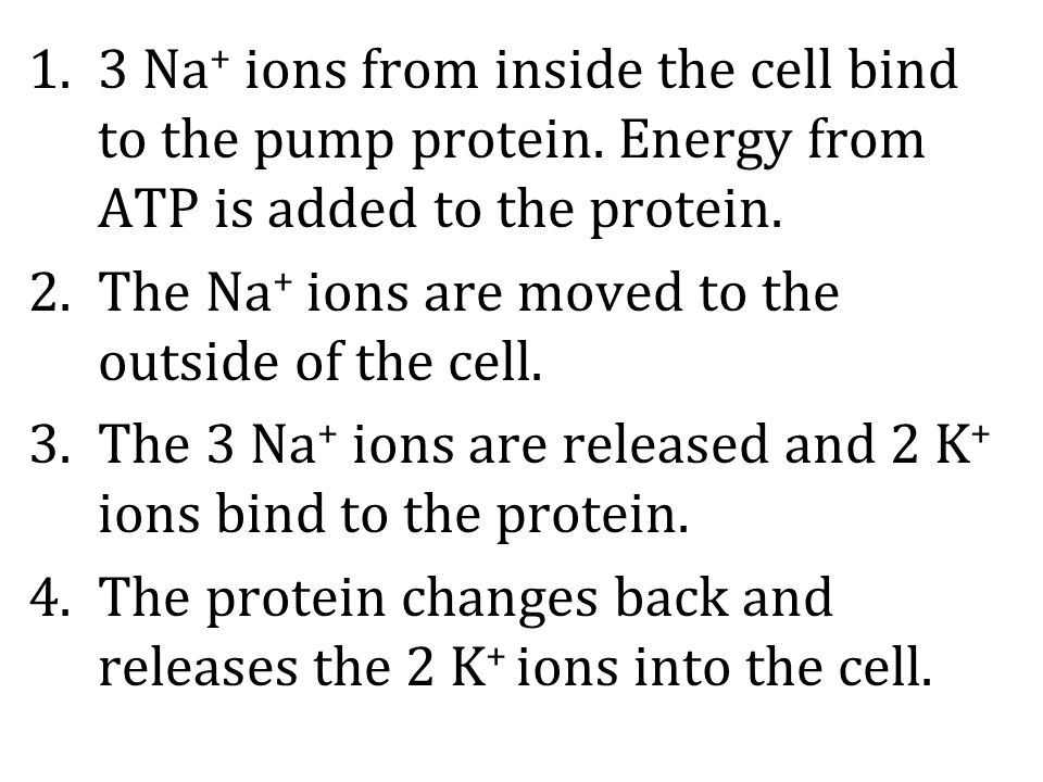 3 Na+ ions from inside the cell bind to the pump protein