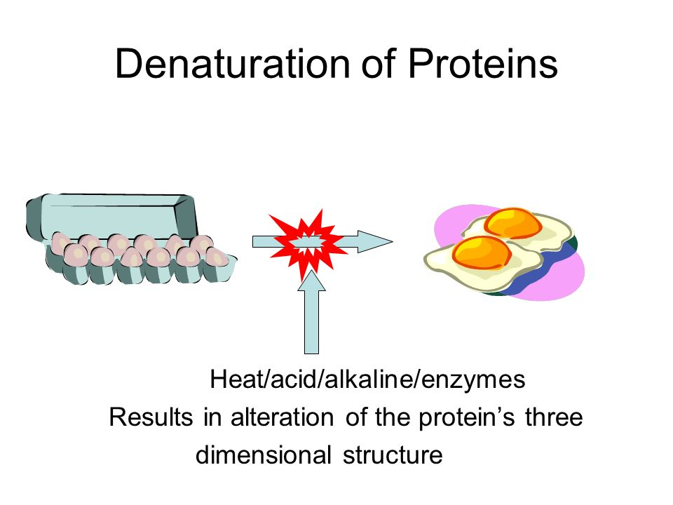 three dimensional structure of proteins The three dimensional structure of proteins objectives: i describe the native state or native conformation of a protein a review the.