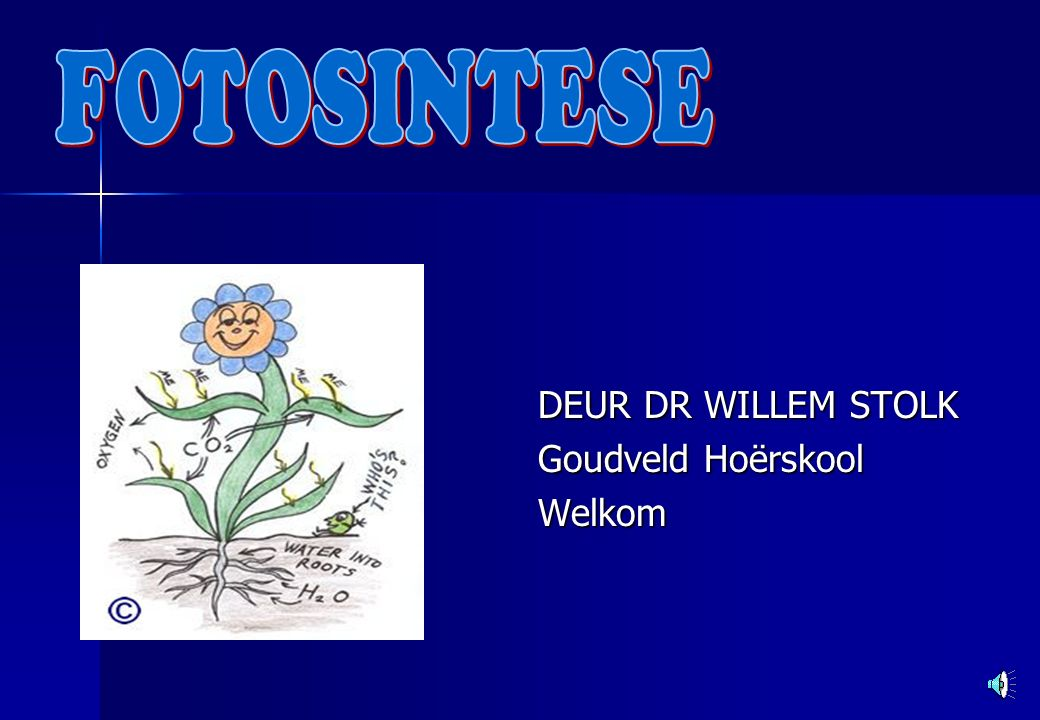 DEUR DR WILLEM STOLK Goudveld Hoërskool Welkom
