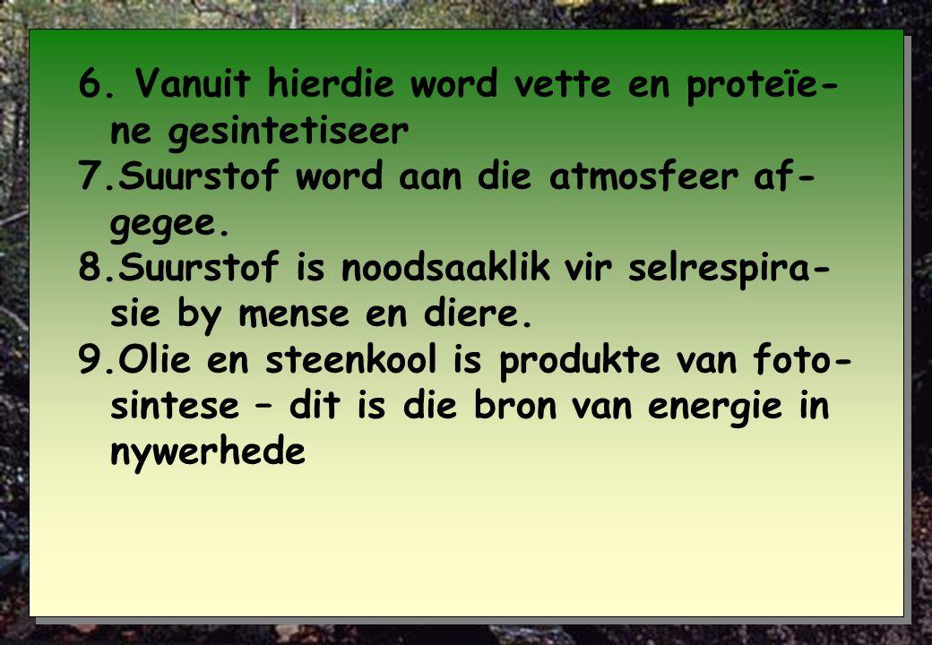 6. Vanuit hierdie word vette en proteïe-ne gesintetiseer