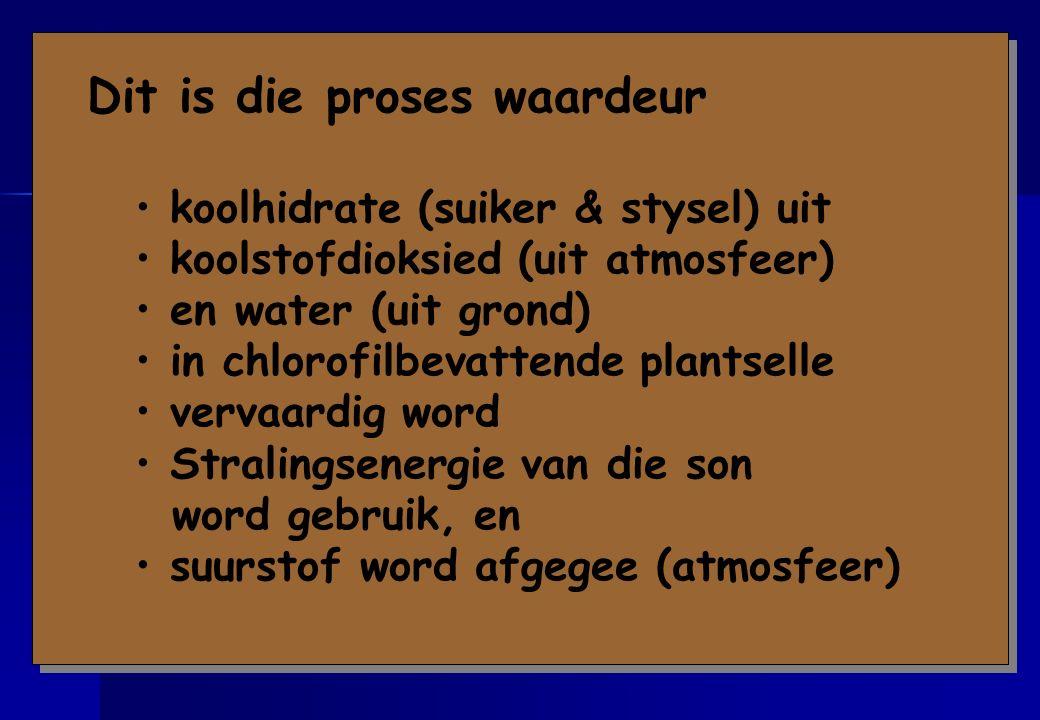 Ken die definisie van fotosintese baie goed !!