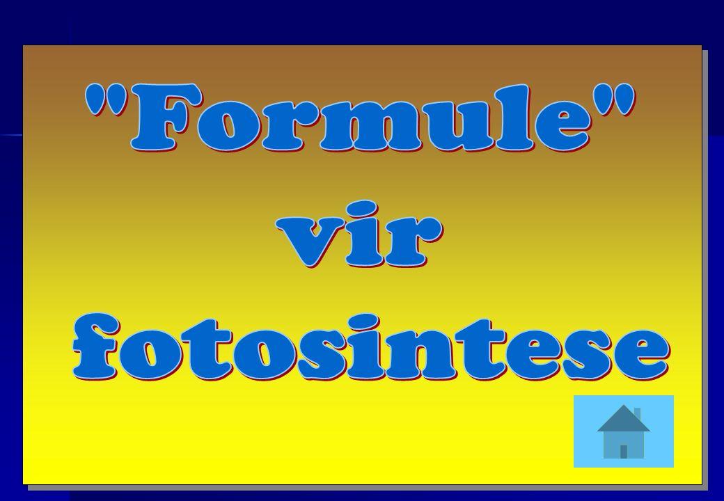 Formule vir fotosintese