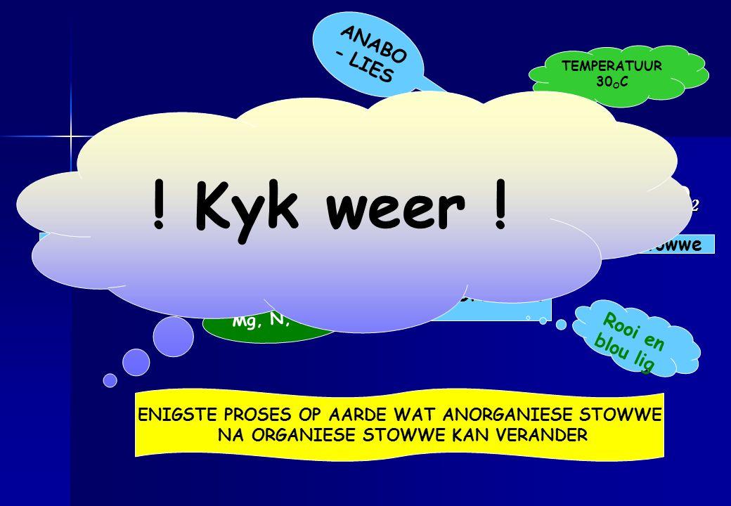! Kyk weer ! 6 CO2 + 6 H2O + LIGENERGIE C6H12O6 + 6 O2 ANABO- LIES