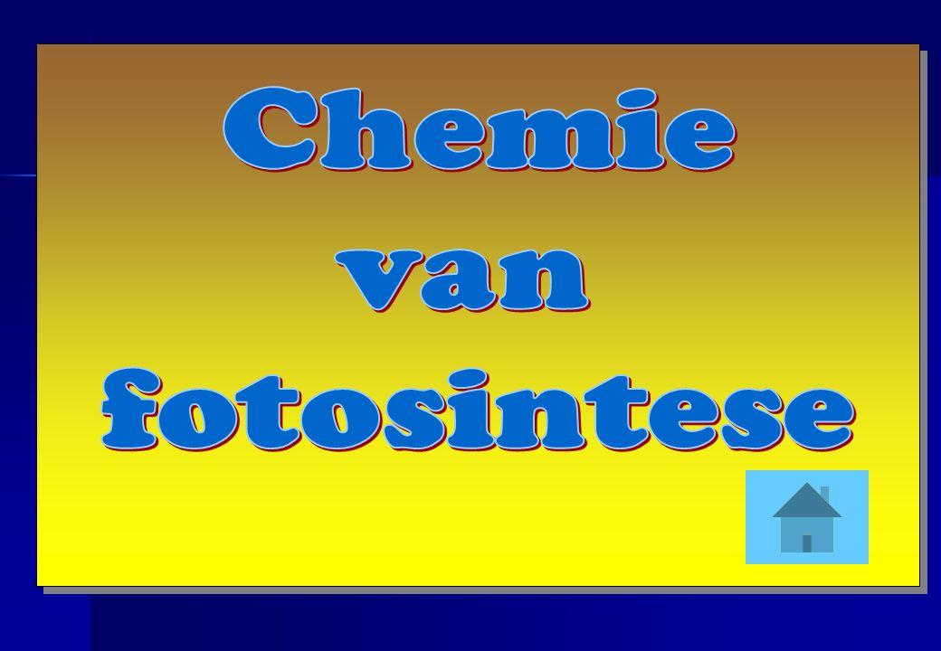 Chemie van fotosintese