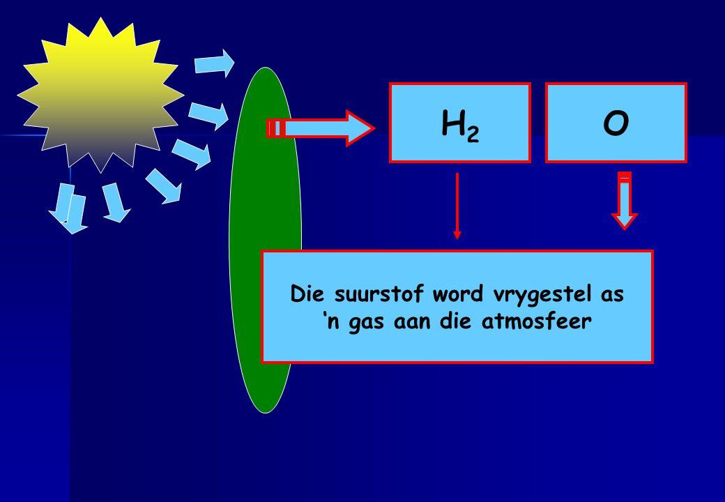 H2 O H20 Energie word aangewend om die Die suurstof word vrygestel as