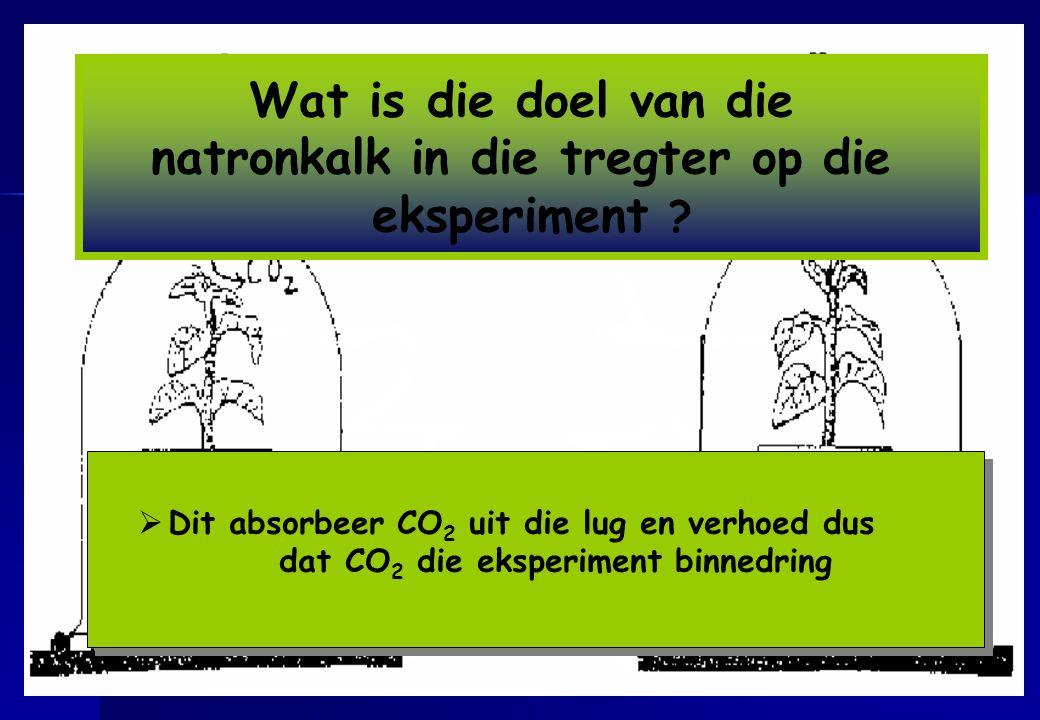 natronkalk in die tregter op die dat CO2 die eksperiment binnedring