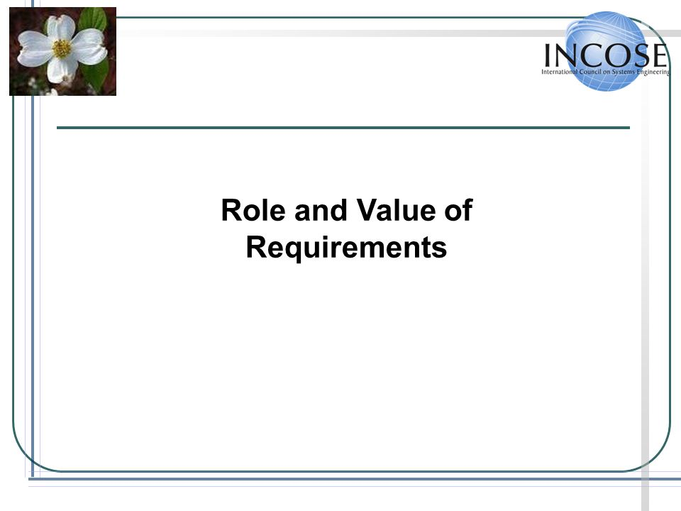 Role and Value of Requirements