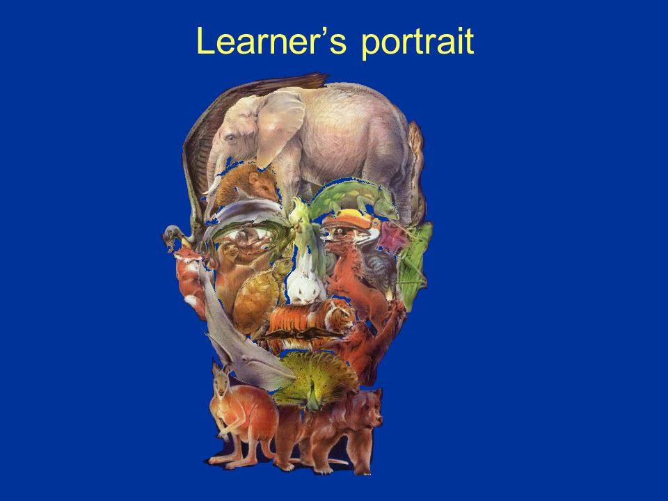 Learner's portrait