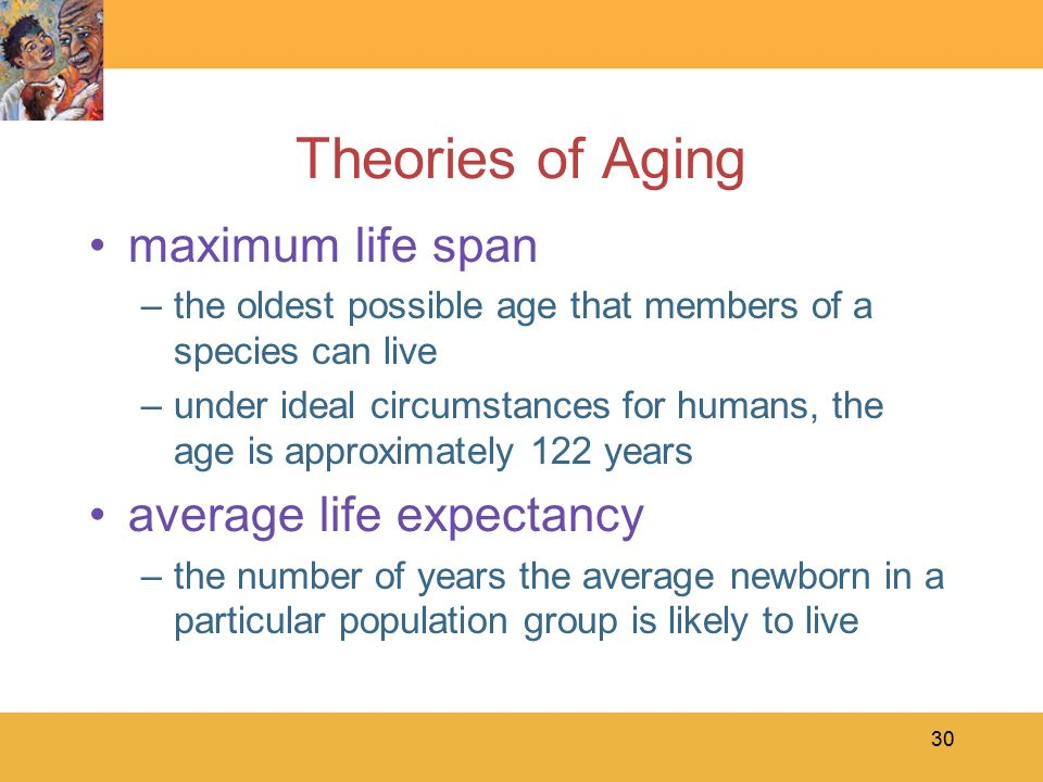 maximum life expectancy essay Probing further ,maximum life expectancy was indonesia which grew by 157 years an increase can be seen in korea life expectancy  essay topic to essay body.