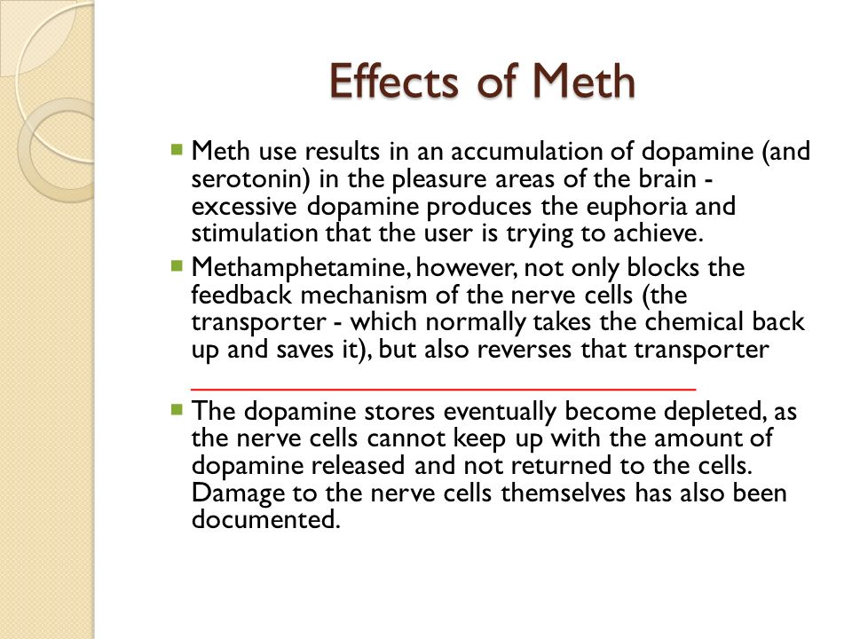 the effects of methamphetamine on the Find patient medical information for methamphetamine oral on webmd including its uses, side effects and safety, interactions, pictures, warnings and user ratings.