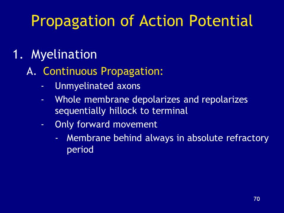 propagation of action potential pdf
