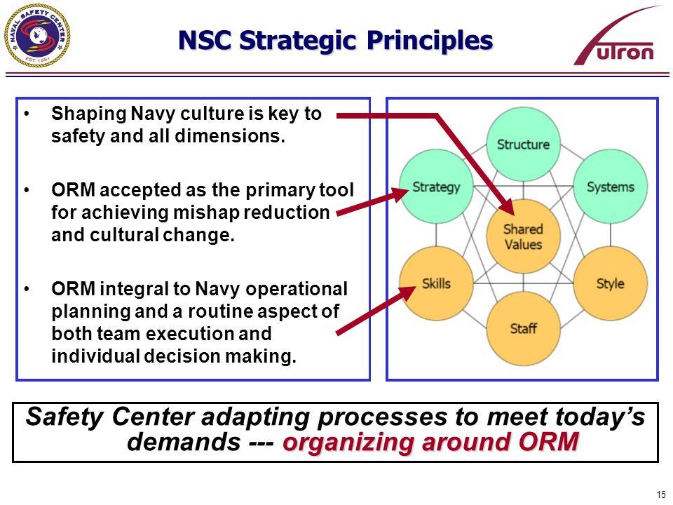 NSC Strategic Principles