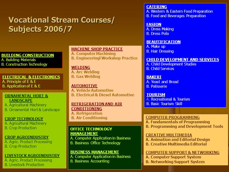 Vocational Stream Courses/ Subjects 2006/7
