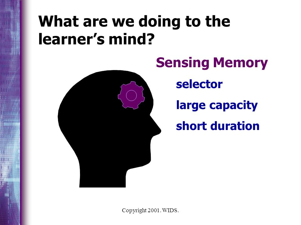 What are we doing to the learner's mind