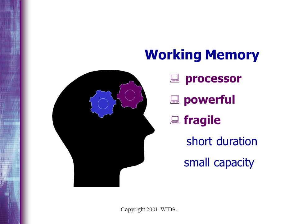 Working Memory processor powerful fragile small capacity