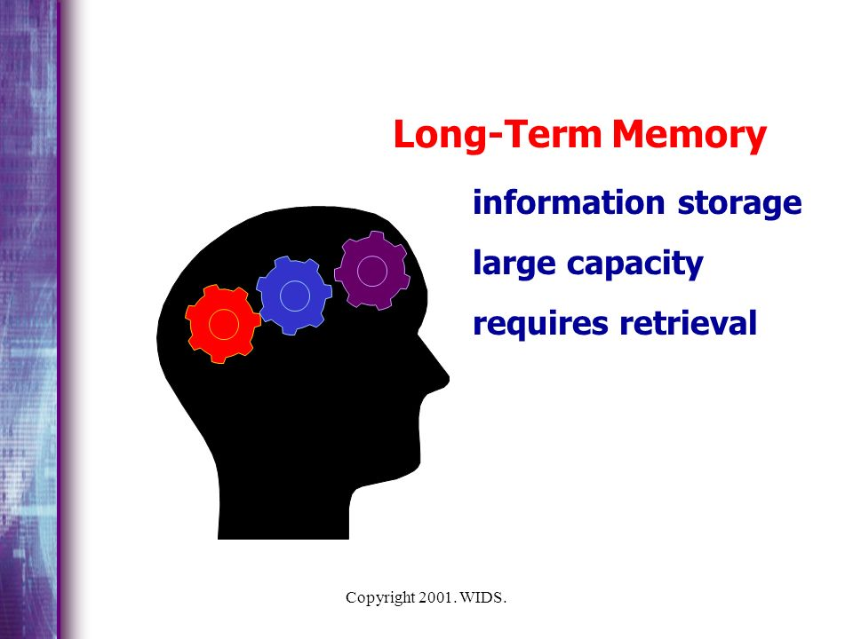 Long-Term Memory information storage large capacity requires retrieval
