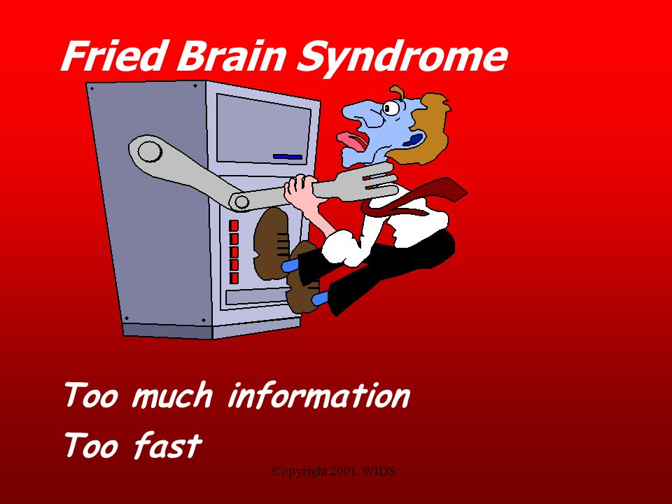 Fried Brain Syndrome Too much information Too fast