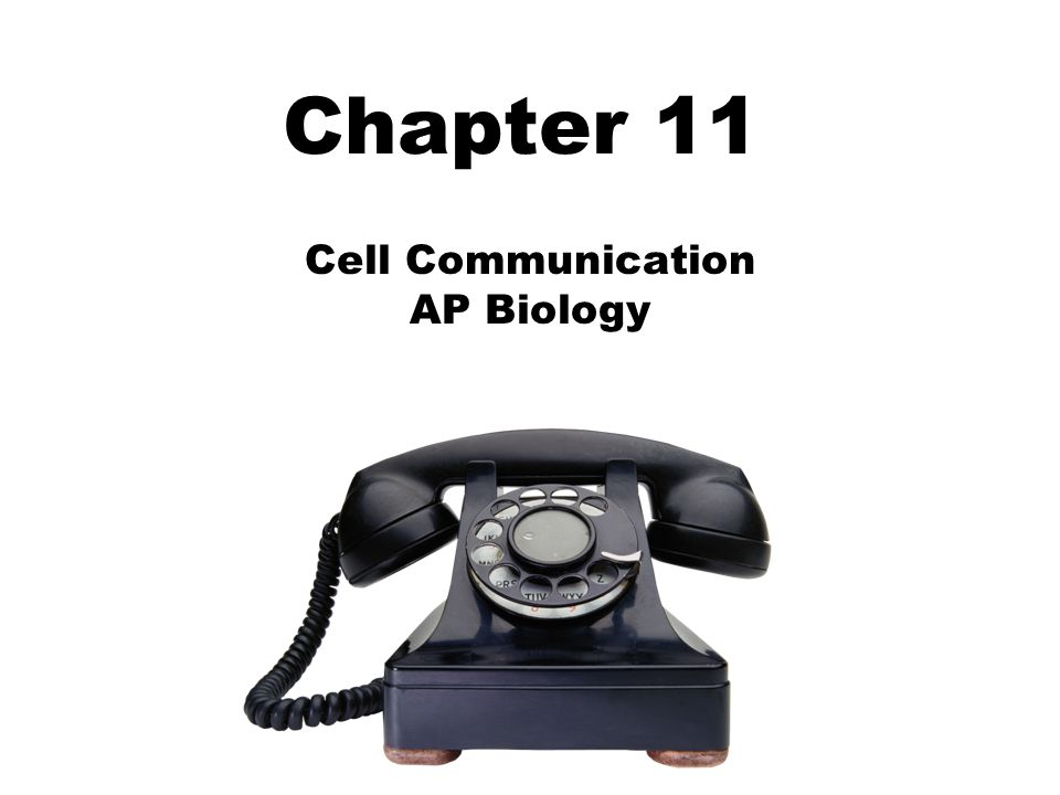 ap biology notes cellular communication Cellular biology pre-test  nerve cell communication: nerve cell communication1pdf  ap bio - final review ap biology labs 1 ap biology labs 2.