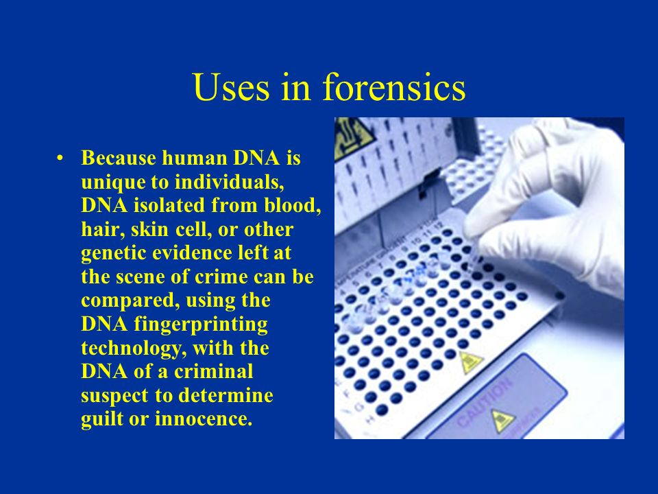 how is dna used to identify a crime suspect Forensic science 101: identifying the suspect  fingerprints have been used to identify  dna evidence is not only used to help identify the suspect in a crime,.