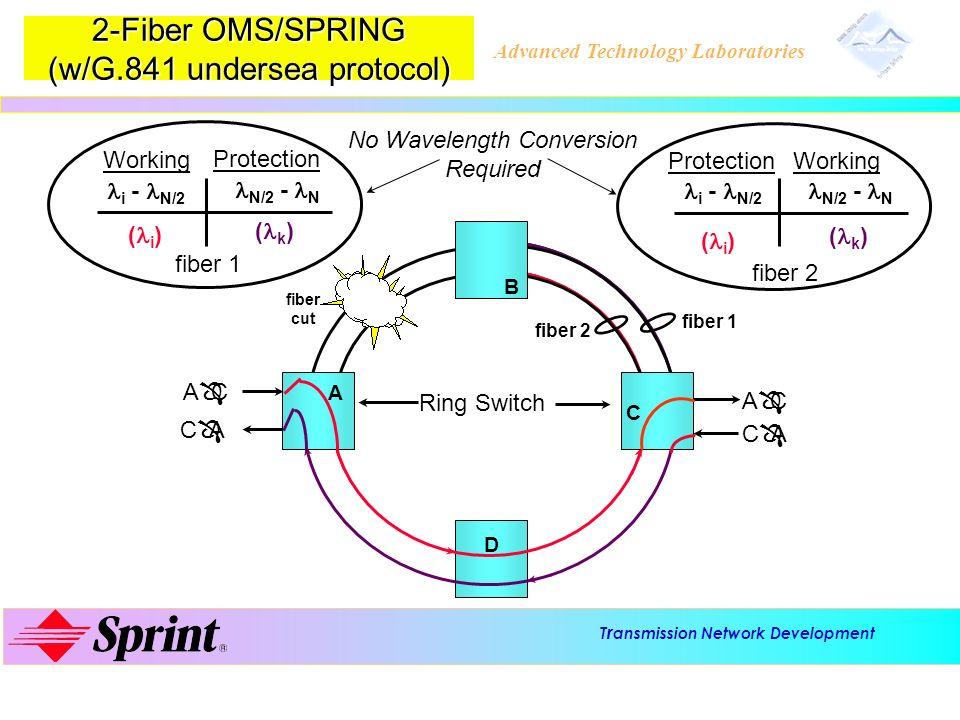 2-Fiber OMS/SPRING (w/G.841 undersea protocol)