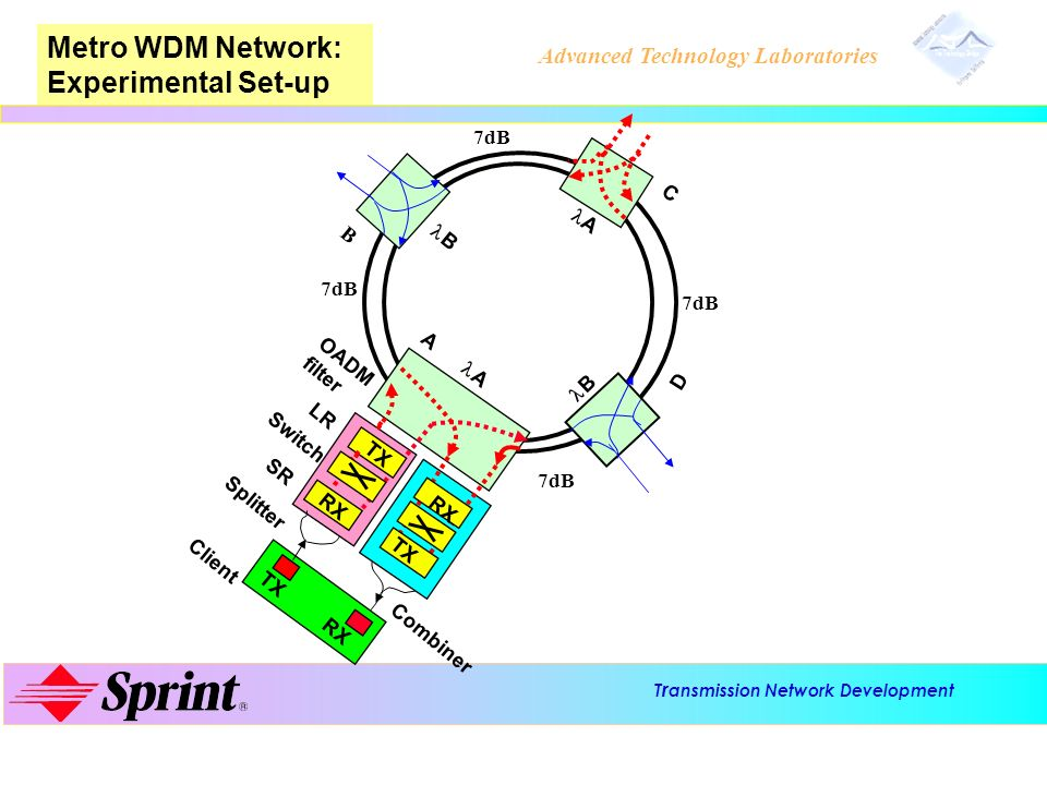Metro WDM Network: Experimental Set-up