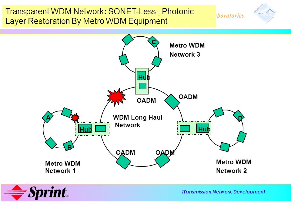 Transparent WDM Network: SONET-Less , Photonic Layer Restoration By Metro WDM Equipment