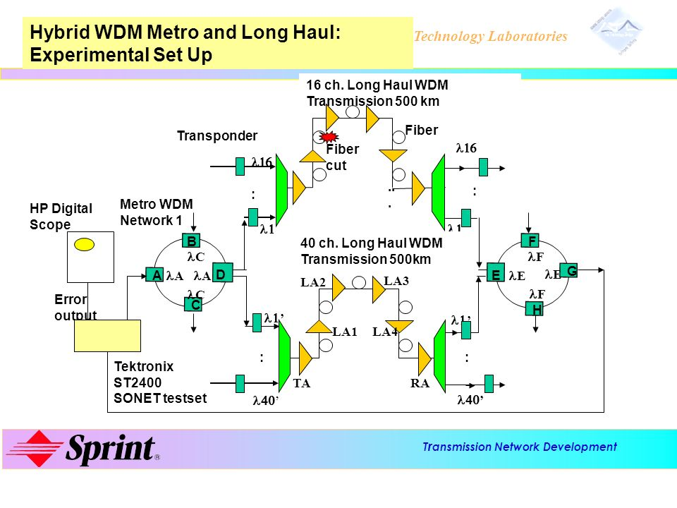 Hybrid WDM Metro and Long Haul: Experimental Set Up