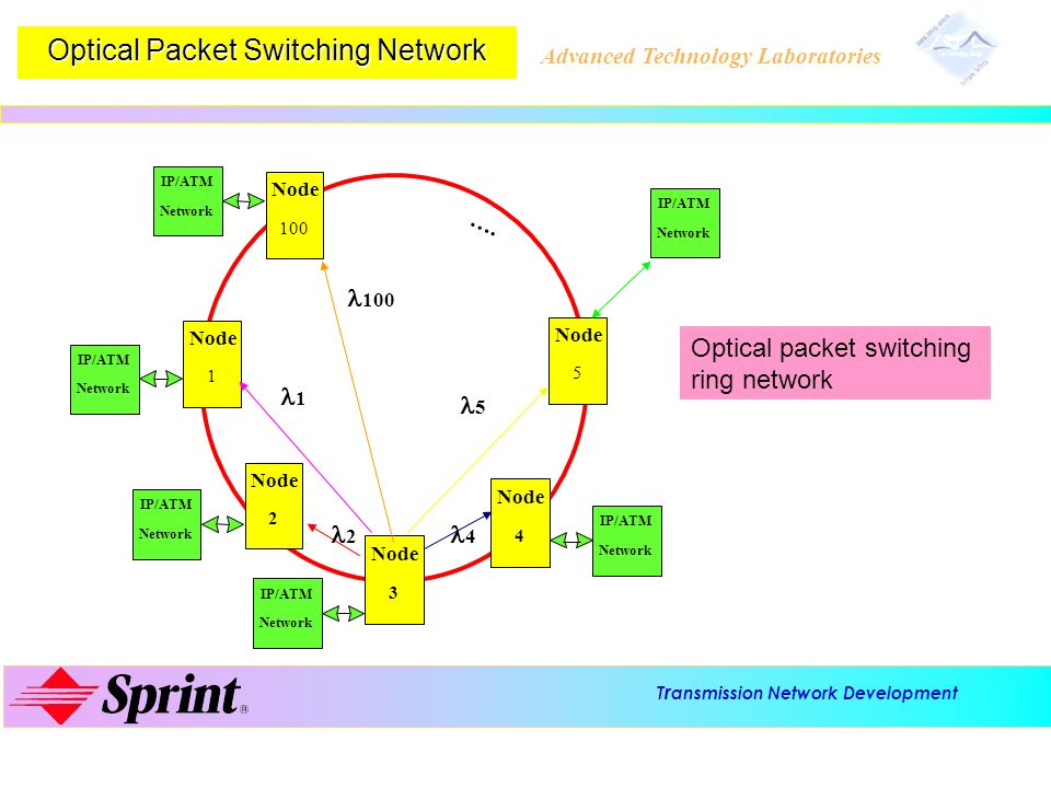 Optical Packet Switching Network