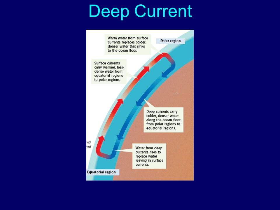 S6E3d- Explain the causes of waves, currents and tides ...